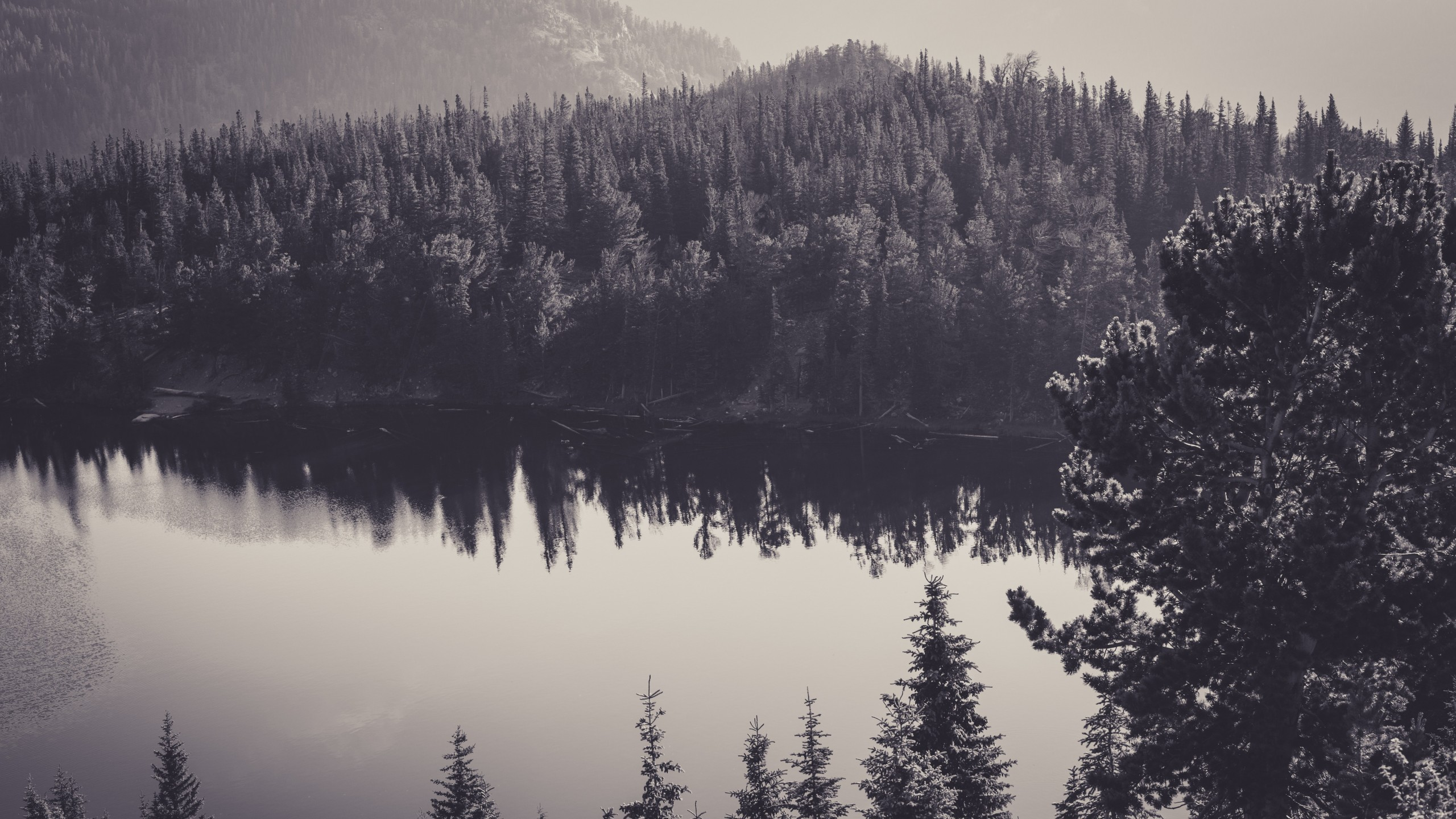 Nature-canada-black-and-white-scenery-travel-top-wallpapers-2560×1440