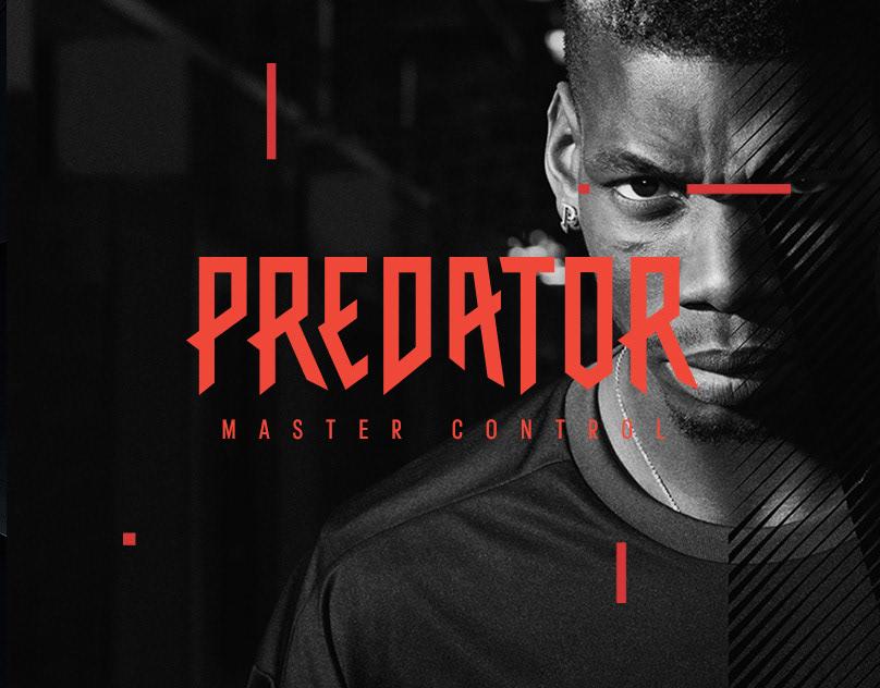 Predator – AR installation